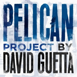 David Guetta - Pelican Project