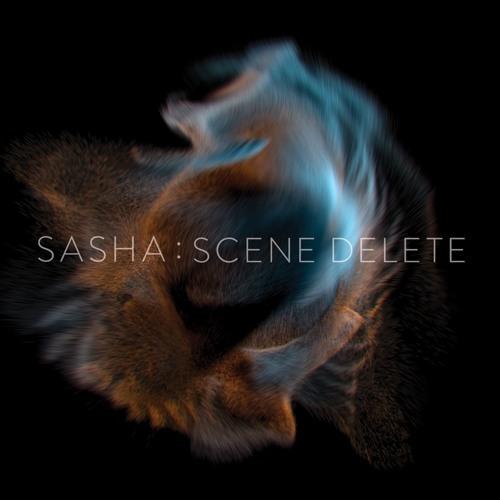 Sasha - Scene Delete