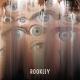 Rookley — Melatonin