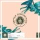 Trooko - True Work EP